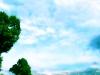 Cielo_38